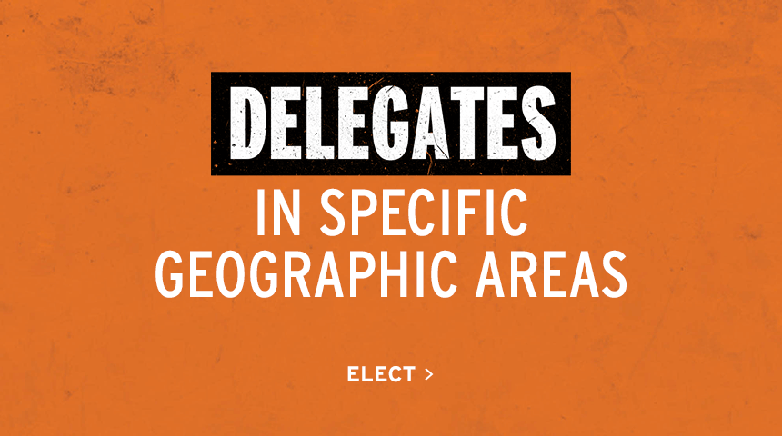 Delegates in Specific Geographic Areas | Elect